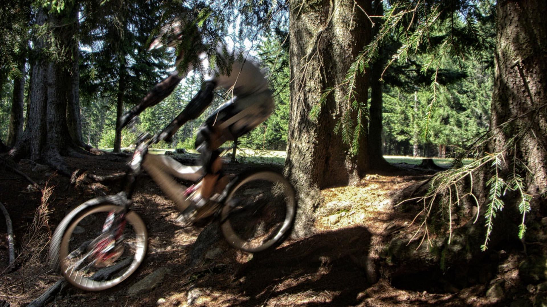 DSCN0340 Downhill